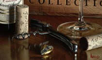 The Collection Giclee on Canvas Wine Art by Thomas Arvid